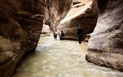 8 Days Tour in Jordan from Amman