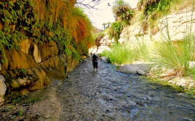 4 Days Hiking Tour in Jordan